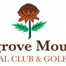 Mangrove mountain logo